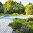 Garden and swimming pool in backyard — Stock Photo #59667465