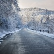 Winter road in snowy forest — Stock Photo #59668717