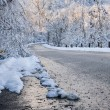 Scenic road in winter forest — Stock Photo #59668973