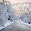 Winter road in snowy forest — Stock Photo #59669023