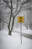 Winter road during snowfall — Stock Photo