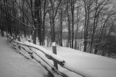 Rural winter scene with fence — Stock Photo