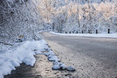 Scenic road in winter forest — Stock Photo