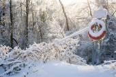 Lifesaver in winter snow — Stock Photo