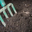 Garden fork turning composted soil — Stock Photo #63256549