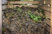 Yard waste in compost bin — Stock Photo