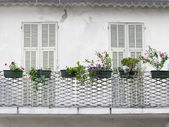 French balcony with shutters — Stock Photo