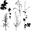 Plants silhouettes set — Stock Vector #75695399