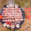 Shish kebab prepared over a black round shaped charcoal barbecue — Stock Photo #52491307