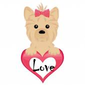 Cute puppy of yorkshire terrier hang the heart — Stock Vector