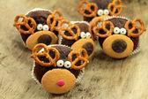 Rudolph — Stock Photo