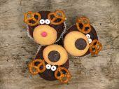Färska muffins — Stockfoto