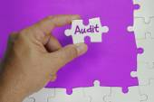 Audit Text - Business Concept — Stock Photo