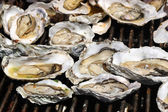Oysters on the Grill — Stock Photo