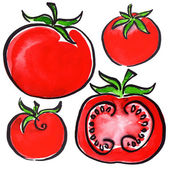 Collection of tomatoes and sliced isolated — Stockfoto