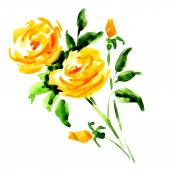 Yellow rose bouquet isolated on white — Stock Photo