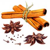 Cinnamon sticks and star anise isolated — Zdjęcie stockowe