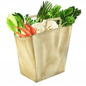 Vegetables in white grocery bag isolated — Stock Photo