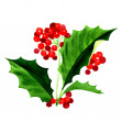 Holly berry pictogram, symbool van Kerstmis — Stockfoto #60772787
