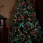 Christmas tree — Stock Photo #58784031