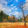 Autumn in Arkhyz — Stock Photo #58656067