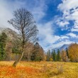 Autumn in Arkhyz — Stock Photo #58803463