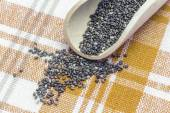 Chia-seeds-9 — Stock Photo