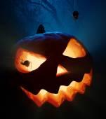 Halloween pumpkin and spiders — Stock Photo