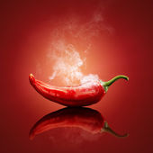 Chili red steaming hot — Stock Photo