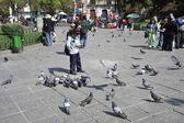 De mensen op de straten van la paz stad — Stockfoto