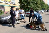 Police officers inspect the documents on the streets in the suburban town of Khimki — Stock Photo