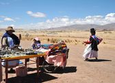 Trade of Souvenirs on the cultural and historical object Tiahuanaco. — Foto Stock