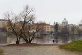 Prague.Views of the City. — Stock Photo