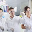 Постер, плакат: Attractive young PhD students scientists observing in the labora