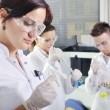 Attractive young PhD students scientists observing in the labora — Stock Photo #58349085