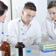 Attractive young PhD students scientists observing in the labora — Stock Photo #58349807