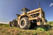 Big yellow old loader standing abandoned in a grass — Stock Photo