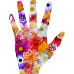 Flower hand — Stock Photo #70187867