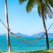 Hammock under the palm trees on the island — Stock Photo #60563357
