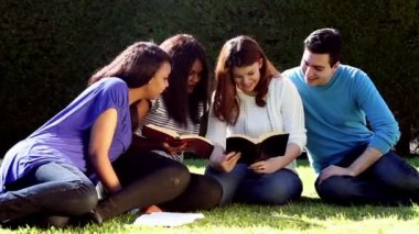 Outdoor Group Bible Study — Stock Video