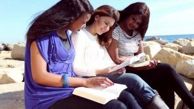 ビーチで聖書を読んでくれる友達 — ストックビデオ