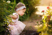 Beautiful Toddler a Garden Looking at Flowers — Stock Photo