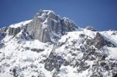Chamonix Mont Blanc — Stock Photo