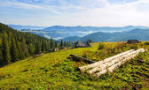 Mountains in the Carpathians — Foto Stock