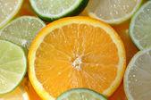 Orange slice among citrus fruit — Stock Photo