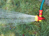 Hose with a spray watering the lawn closeup — Stock Photo