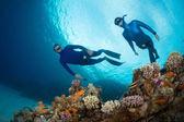 Freedivers — Stock Photo