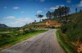 Madagascar — Stock Photo