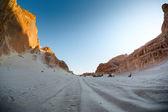 Sinai, Egypt — Stock Photo