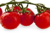 Tomatoes on white — Stock Photo
